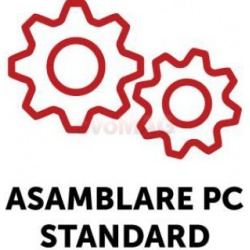Serviciu Asamblare Standard